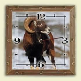 Nástenné hodiny - motív muflón