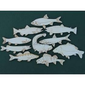 Ryby č.10014