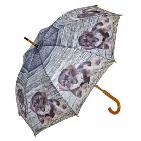 Dáždnik AKAH - Hrubosrstý jazvečík