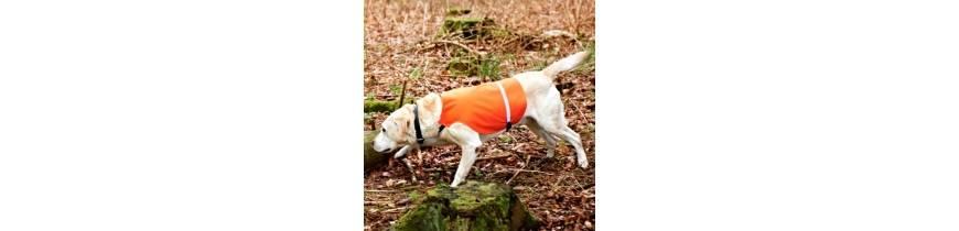 Pre poľovníckych psov